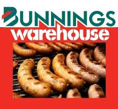 Logo for Bunnings